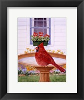 Framed Cardinal And Geraniums