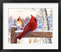 Framed Cardinal Pair with Birch