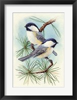 Framed Chickadee Vignette
