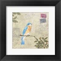 Framed Bird & Postage I