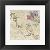Framed Bird & Postage II
