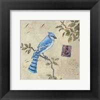 Framed Bird & Postage III