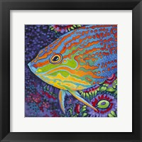 Framed Brilliant Tropical Fish I
