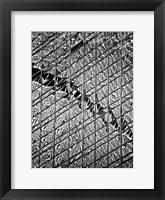 Reflections of NYC V Framed Print
