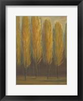 Framed Soft Sienna