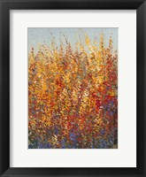 High Desert Blossoms I Framed Print