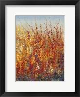 High Desert Blossoms II Framed Print