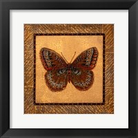 Framed Crackled Butterfly - Fritillary