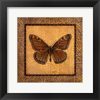 Framed Crackled Butterfly - Monarch