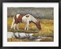 Framed Meadow Munching