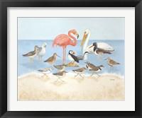 Framed Seabird Summit