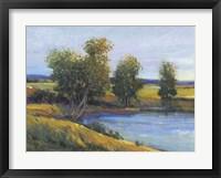 Tree's Reflection II Framed Print