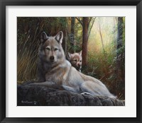 Framed Recumbent Wolves