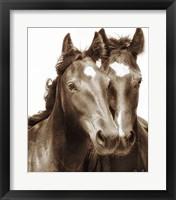 Framed Horse Portrait III