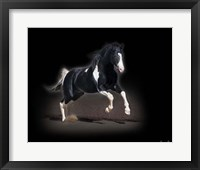 Framed Horse Portrait VIII