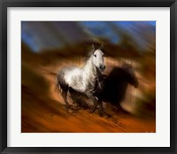 Framed Blazing Horse III