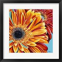 Color Bursts II Framed Print
