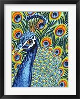 Plumed Peacock I Framed Print