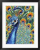 Plumed Peacock I Framed Print
