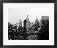 Bridges of NYC V Framed Print