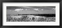 Framed Shore Panorama III