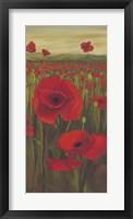 Red Poppies in Field II Framed Print