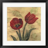 Framed Tulip on Wood
