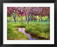 Framed Summer Spring