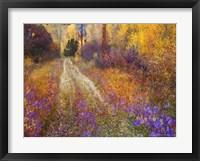 Lost Canyon Larkspurs II Framed Print