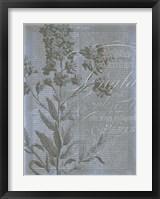 Fleur de Bleu II Framed Print