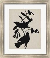 Framed Audubon Silhouette IV