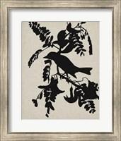 Framed Audubon Silhouette V