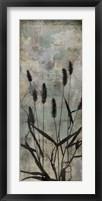 Wild Grasses II Framed Print