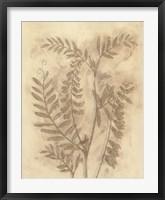 Gilded Foliage I Framed Print