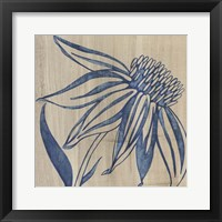 Framed Indigo Coneflower