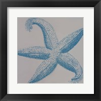 Framed Sea Stars I