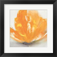 Framed Wild Orange Sherbet II