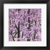 Framed Spring Song Petite I