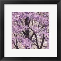 Framed Spring Song Petite II