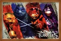 Framed Ninja Turtles - Bars