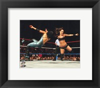 Framed Brie Bella 2014 Action