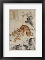 Framed Family of Tigers