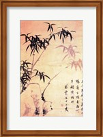 Framed Sin Wi, Bamboos