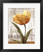 Framed Golden Flower