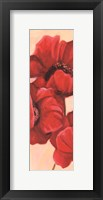 Framed Red Poppy II