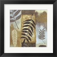 Framed Patterns of Nature I