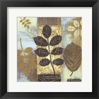 Framed Patterns of Nature II