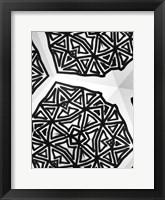 Framed Buckminster III