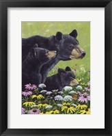 Framed Black Bears