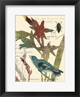 Exotic Blossom II Framed Print